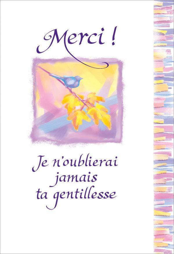 [Incognito] Carte De Souhaits - Merci! Je N'oublierai...frc352